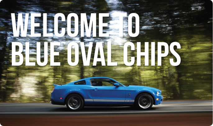 Blue Oval Chips
